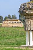 Parque arqueológico. metaponto. basilicata. italia. — Foto de Stock
