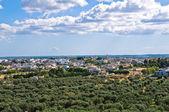 斯佩基亚的全景视图。普利亚大区。意大利. — 图库照片