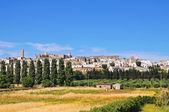 Panoramic view of Specchia. Puglia. Italy. — Stock Photo