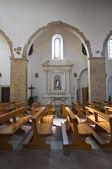 聖アンドレアの大聖堂。静脈。バジリカータ州。イタリア. — ストック写真