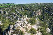 カステッラネータの渓谷。プーリア州。イタリア. — ストック写真