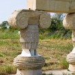 Archaeological Park. Metaponto. Basilicata. Italy. — Stock Photo