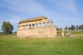 Parco archeologico. metaponto. basilicata. italia. — Foto Stock
