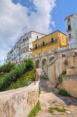 Panoramic view of Rodi Garganico. Puglia. Italy. — Stock Photo