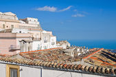 Panoramic view of Monte Sant'Angelo. Puglia. Italy. — Foto de Stock