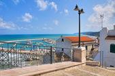 Panoramic view of Rodi Garganico. Puglia. Italy. — Fotografia Stock