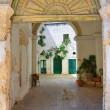 Historical palace. Specchia. Puglia. Italy. — Stock Photo
