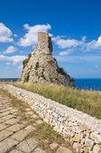 Nasparo věž. tiggiano. Puglia. Itálie. — Stock fotografie