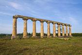 Letecký Palatin. Metaponto. Basilicata. Itálie. — Stock fotografie