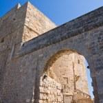 Carlo V Castle. Monopoli. Puglia. Italy. — Stock Photo #43014855