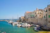 Panoramic view of Giovinazzo. Puglia. Italy. — Stock Photo