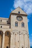 собор trani. апулия. италия. — Стоковое фото