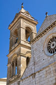 Cathedral of Assunta. Minervino Murge. Puglia. Italy. — Stock Photo