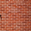 Biohazard graffiti on brick wall illustration — Stock Photo