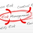 Risk management process diagram — Stock Photo #18396887