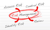 Risk management process diagram — Stock Photo