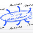 Change Management flow chart — Stock Photo #21148625