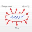 Several possible outcomes of performing an audit — Stock Photo #21650133