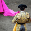 Bullfighter in the ring. — Stock Photo