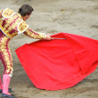 Stock Photo: Bullfighter in ring. brave matador