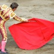 Bullfighter in the ring. brave matador — Stock Photo