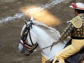 Bullfighter in the ring. traditional picador. — Stock Photo