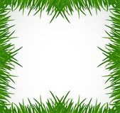 Green grass border illustration design — Stok fotoğraf