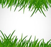 Green grass border illustration design — 图库照片