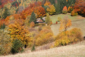 Cottage in autumn — Stock Photo