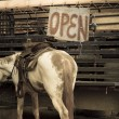 Horse and open sign in Monument Valley — Stock Photo #13619012
