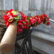 Flowered Bicycle — Stockfoto