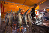 Fish-on-stick stall at New Years in Tokyo — Foto Stock
