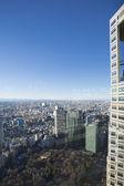 Detail van de tokyo metropolitan regering gebouw — Stockfoto