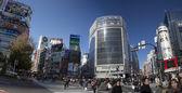 Tokyo Shibuya — Stock Photo