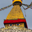 Boudhanath Stupa and birds — Stock Photo
