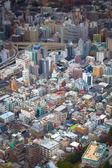 Tokyo skyline — Stock Photo