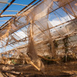 Broken and abandonned Greenhouse — Stock Photo