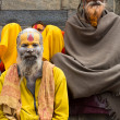Sadhu - holy man — Stock Photo
