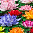 Fake Lotus flowers — Stockfoto