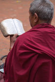 Monk reading in Nepal — Stock Photo