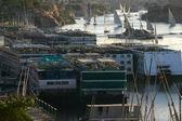 Too many boats on the Nile — Stock Photo