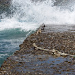 Stock Photo: Waves slamming into the rocky coast line in Folegandros