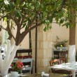 Olive-tree and traditional terrace of a restaurant in Crete — Stock Photo