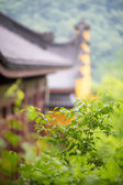 Traditional Chinese temple — Stockfoto