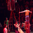 A group of acrobats performing in a circus — Stock Photo