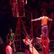 A group of acrobats performing in a circus — Stock Photo #29690359