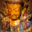 Golden buddha head with crown . — Foto Stock