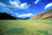 Green field valley in the himalayas — Stock Photo