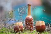 Drewniana butelka i okulary z trawy i gałęzi wokół — Zdjęcie stockowe