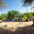 Panorama of a campsite in Sicily — ストック写真